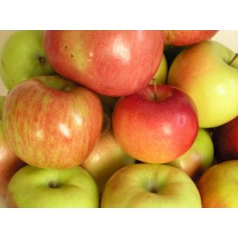 Яблоко, фруктовая пудра сухая, 10гр, Китай