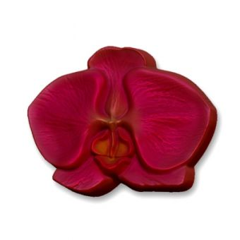 Орхидея  цветок PC - пластиковая форма