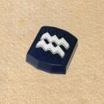 Пластиковая форма для мыла - Зодиак Водолей