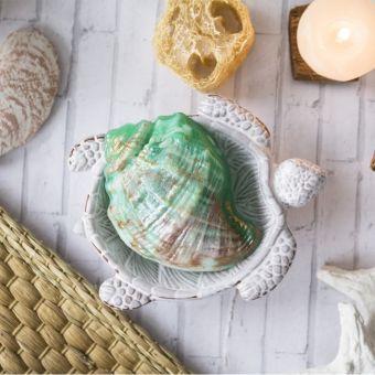 Ракушка Рапана (pc) - пластиковая форма