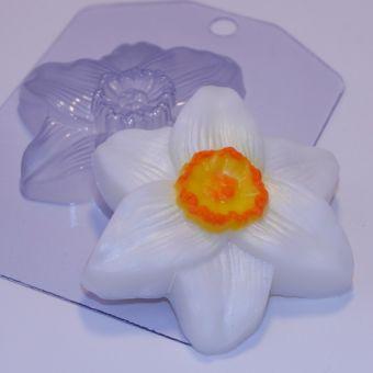 Нарцисс ED - пластиковая форма