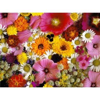 Цветочная, отдушка 10мл, Англия