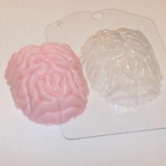 Мозг - пластиковая форма